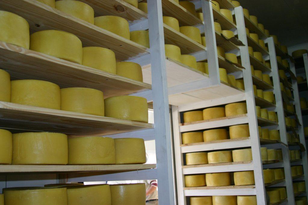 (Español) Ranking de exportadores de queso de Latinoamérica